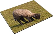 MSD Place Mat Non-Slip Natural Rubber Desk Pads design: 8804169 black and white lamb standing on the pasture